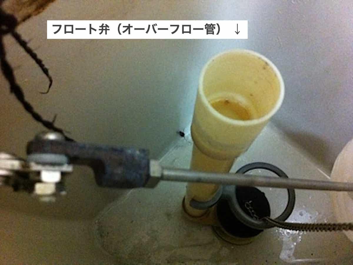 トイレタンク内のオーバーフロー管(フロート弁)